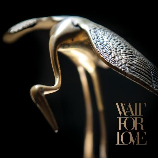 Cover Wait For Love