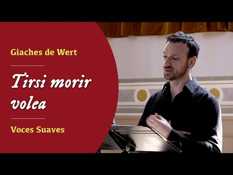 Video Voces Suaves - Tirsi morir volea Giaches de Wert (1535-1596)