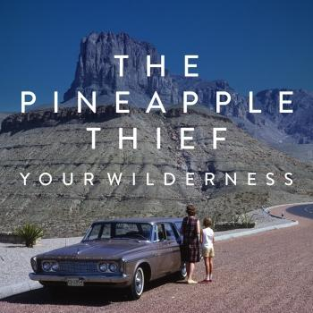 Cover Your Wilderness