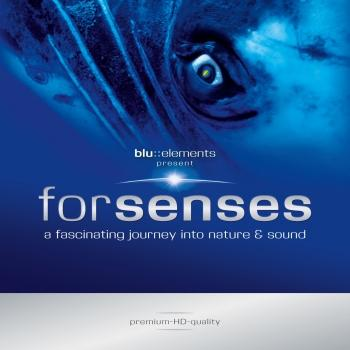Cover Forsenses I - A Fascinating Journey into Nature and Sound